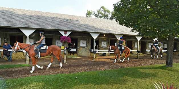 Horses in training for Todd Pletcher queue up for their trip to the track for their morning exercise Sept. 2, 2015 at the Oklahoma Training Center in Saratoga Springs, N.Y.    (Skip Dickstein/Times Union) Photo: SKIP DICKSTEIN