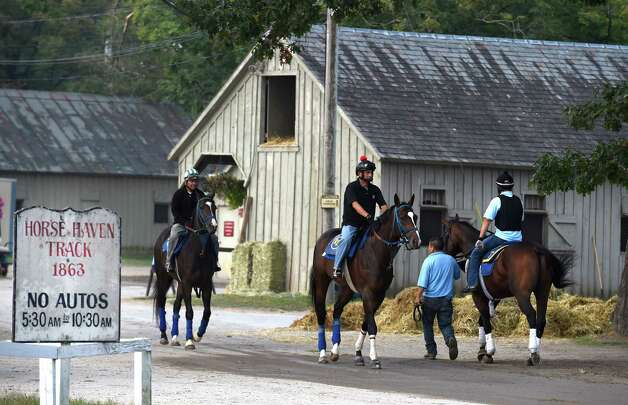 Horses coming and going during morning exercise hours at the Oklahoma Training Center Wednesday Sept. 2, 2015  in Saratoga Springs, N.Y.    (Skip Dickstein/Times Union) Photo: SKIP DICKSTEIN