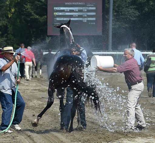 Azar is doused with ice and water by Dr. Anthony Verderosa, right,  Chief Examining Veterinarian to cool him off after he won The With Anticipation Stake on Military Appreciation Day at the Saratoga Race Course Wednesday Sept. 2, 2015  in Saratoga Springs, N.Y.    (Skip Dickstein/Times Union) Photo: SKIP DICKSTEIN