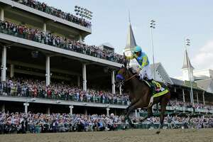 American Pharoah won't retire, targeting Breeders' Cup - Photo
