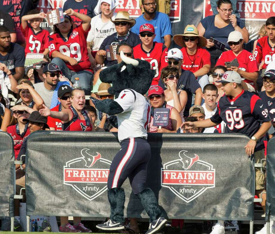 Texans mascot Toro will be in attendance at the Back to Football Party at the Kemah Boardwalk. Photo: Brett Coomer, Staff / © 2015 Houston Chronicle
