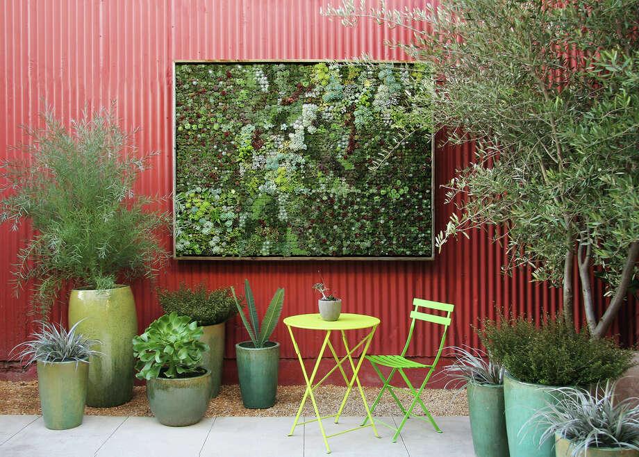 succulent wall art Photo: Floragrubb.com