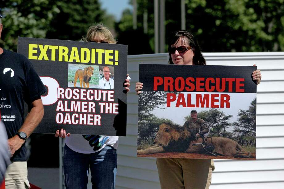 Protesters gathered in the parking lot of Dr. Walter Palmer's dental clinic in July. Palmer plans to go back to work at his office in a few days. Photo: Adam Bettcher, Stringer / 2015 Getty Images