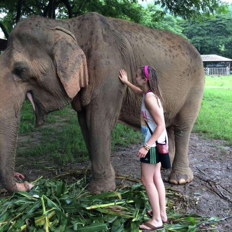 American University student Emily Wolfe, of Stamford, traveled to Thailand this summer to help efforts to save working elephants that have been abused or suffered injuries, and to learn about Thai culture. Photo: Contributed / Contributed / Stamford Advocate