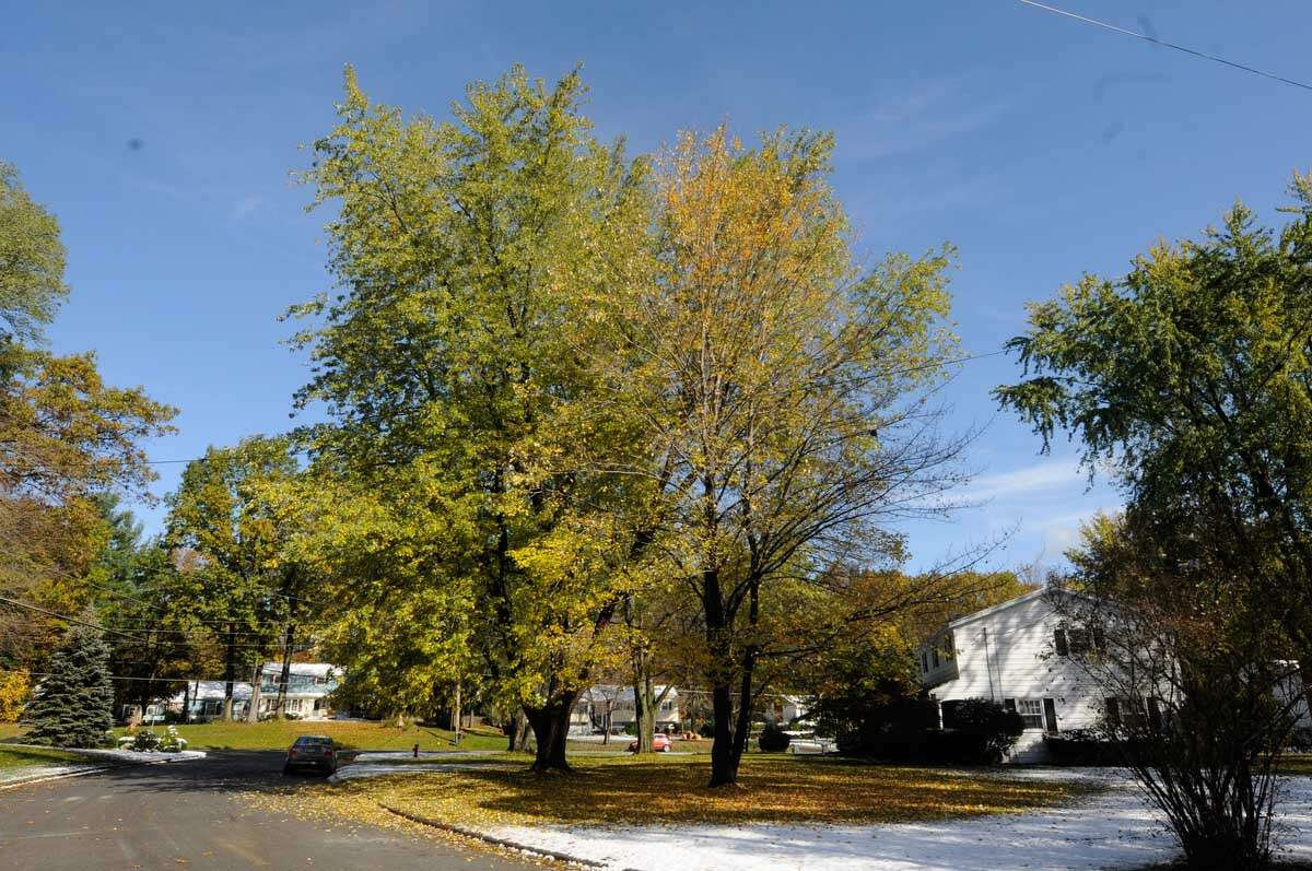 Clifton Park benefits from low poverty rates, a high median income, and stable suburban neighborhoods such the Country Knolls area. (Michael P. Farrell/Times Union) ORG XMIT: MER2015090415362409