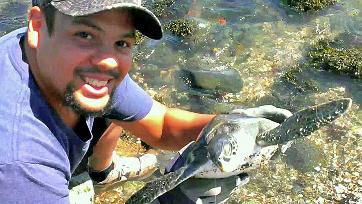 """Fsherman Daniel Verdejo recently caught a sea turtle in Milford. He posted on the Connecticut Fish and Wildlife's Facebook page a photo of the small turtle. """"Caught a Sea Turtle while I was fishing in Milford CT, Took the hook out safely and released it back out to the ocean,"""" he wrote."""