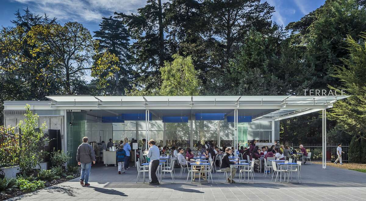 The new cafe pavilion at the California Academy of Sciences was designed by Mark Cavagnero Associates. Its glass canopy is reminiscent of the Academy structure designed by Italy's Renzo Piano Building Workshop. The Terrace, California Academy of Sciences San Francisco Architect - MArk Cavagnero Associates