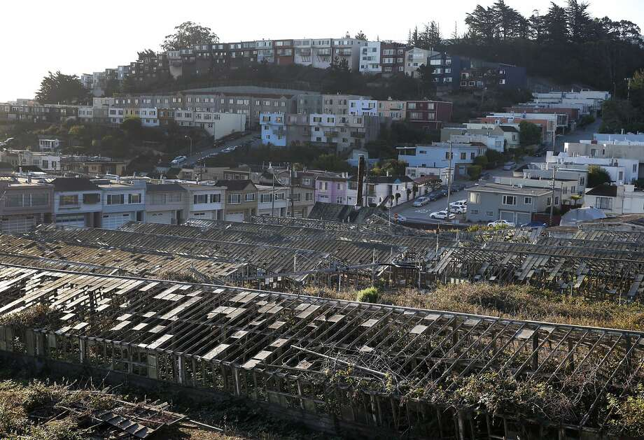 Rows of decaying greenhouses are seen in the Portola district of San Francisco, Calif. on Tuesday, Sept. 8, 2015. The eighteen glass and wood greenhouses have fallen in disrepair since 1992 when the business shut down. Now a group of residents are hoping to acquire the property and restore the site. Photo: Paul Chinn, The Chronicle
