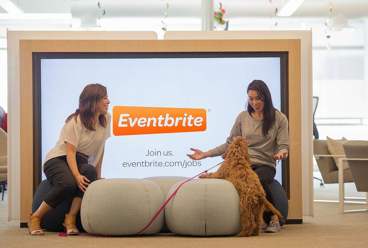 Employees pose for a photo at the Eventbrite office in San Francisco on August 03, 2015.