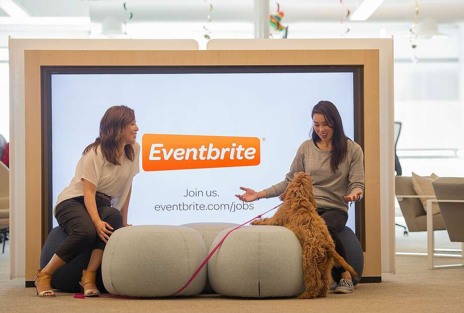 Employees pose for a photo at the Eventbrite office in San Francisco on August 03, 2015. Photo: Josh Edelson, JOSH EDELSON / SAN FRANCISCO CHR