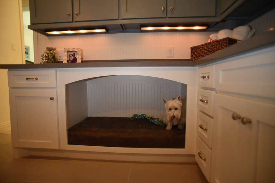 Drees Custom Homes now has model homes in the Woodtrace neighborhood in Tomball with multi-purpose family ready areas, including a large built-in pet bed being checked out by Westie Banan Kidwell, 6, of Austin. (Photo by Jerry Baker/Freelance) Photo: Jerry Baker, Freelance