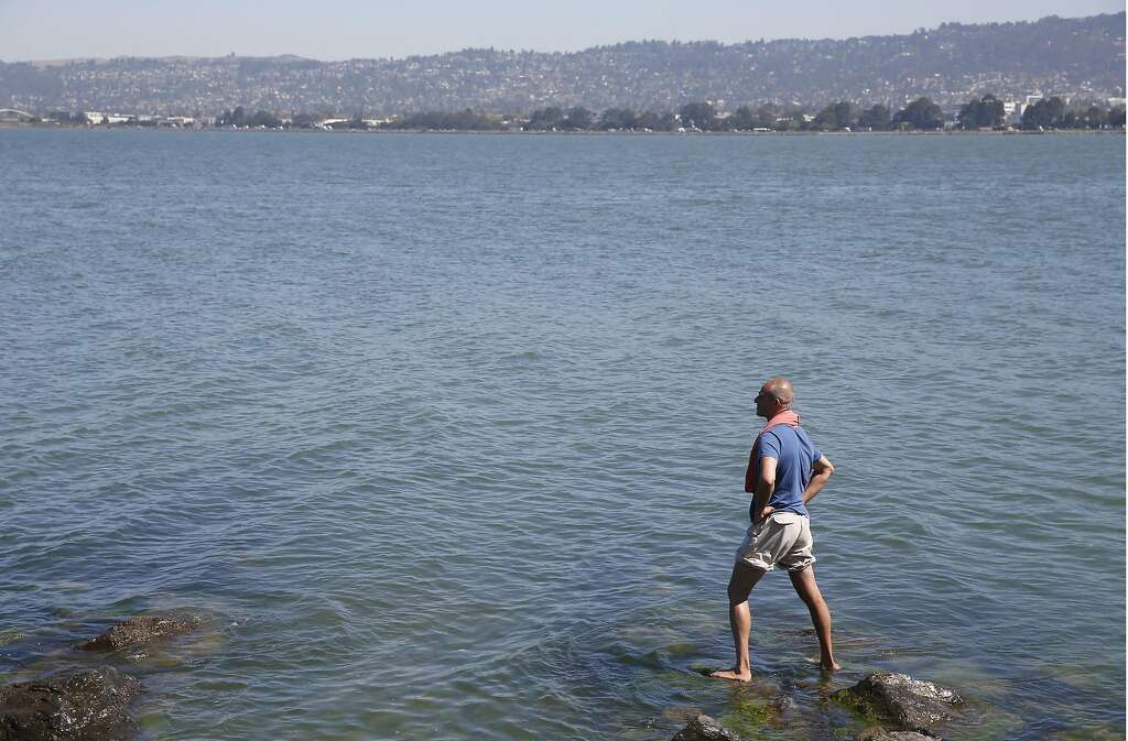 S.F. Bay shows signs of progress in biennial report - SFGate