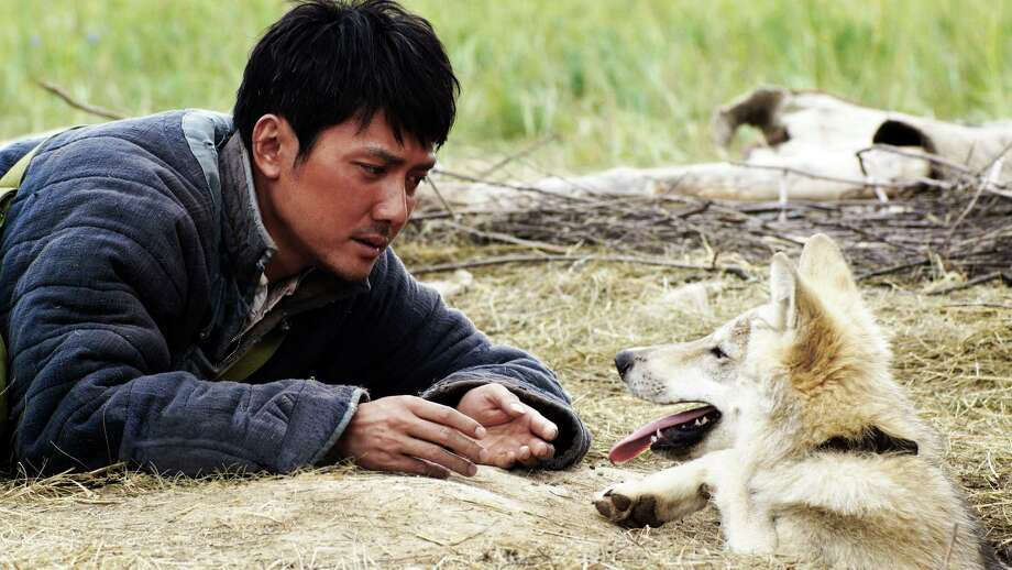 "Shaofeng Feng stars in ""Wolf Totem."" Photo: Courtesy Of Columbia Pictures / ©2015 CTMG.  All Rights Reserved."