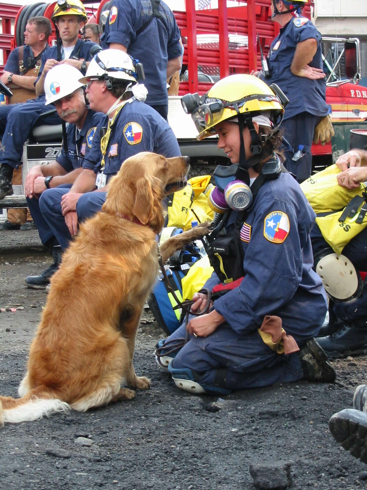 As the country recovered from the 9/11 attacks, hundreds of heavy-hearted search and rescue teams were deployed to places like Ground Zero to sift through the tragedy in search of fellow Americans. The grief-stricken area was the first deployment for San Antonio native Denise Corliss and her golden-hearted golden retriever, Bretagne.