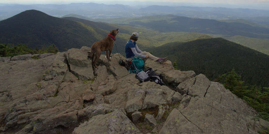 Rocky and Gillian Scott on the summit of Killington Peak. Rocky is sniffing at the lunch of some hikers below the ledge. (Herb Terns / Times Union) Photo: Picasa