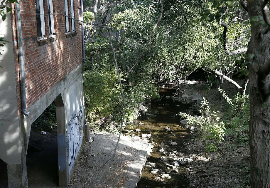 San Anselmo Creek trickles behind downtown businesses in San Anselmo, Calif. on Thursday, Sept. 10, 2015. The creek has crested well above the 13-foot flood stage at least twice since 1982 and national weather forecasters are predicting significant El Nino conditions this winter. Photo: Paul Chinn, The Chronicle