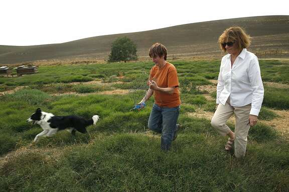 Livestock manager Ellen Skillings (middle) and owner Jeanne McCormack (right) show McCormack Ranch in Rio Vista, Calif., on Friday, September 11, 2015.