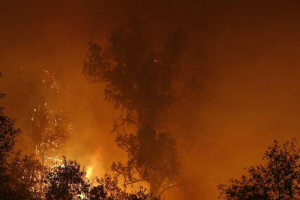 Flames from the Butte Fire consume trees as it burns near San Andreas, Calif.,  Friday Sept. 11, 2015.(AP Photo/Rich Pedroncelli)