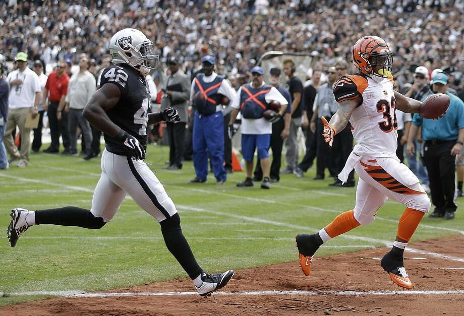 Jeremy Hill (right) scored the first of four Bengals touchdowns on a 3-yard run as Raiders safety Larry Asante gives chase. Photo: Ben Margot, Associated Press