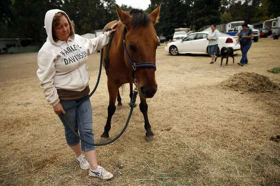 Valley Fire evacuee Joy Fleming of Middletown waits for a veterinarian to look at her ailing horse, Durado, at the Napa County Fairgrounds in Calistoga, Calif., on Monday, September 14, 2015.