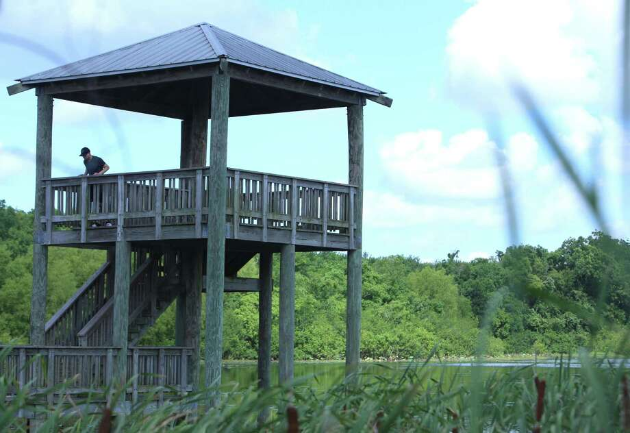 An unidentified man peers over the railing of White Lake's observation deck at Cullinan Park Conservancy in Sugar Land. Photo: Dylan Aguilar, Staff / © 2015 Houston Chronicle