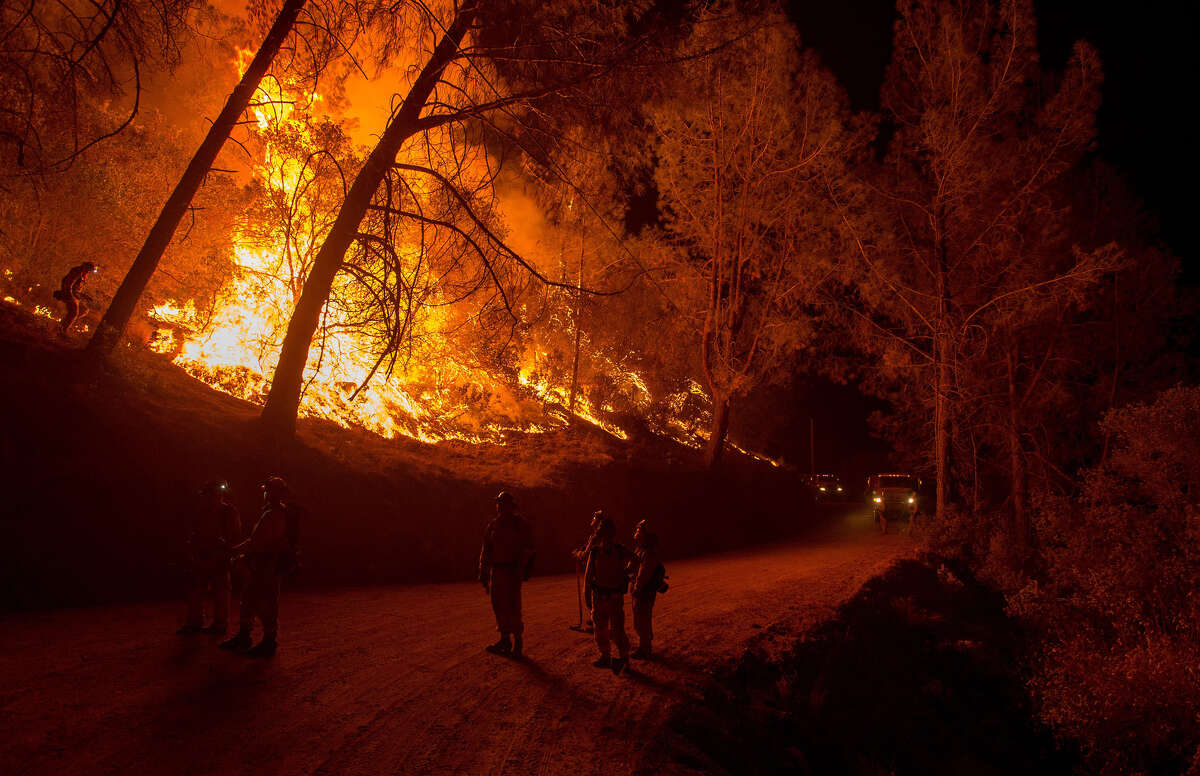 Firefighters light a backfire while battling the Butte fire near San Andreas, California on September 12, 2015. Wildfires have spread rapidly through northern California, destroying hundreds of homes, forcing thousands of people to flee and injuring four firefighters.