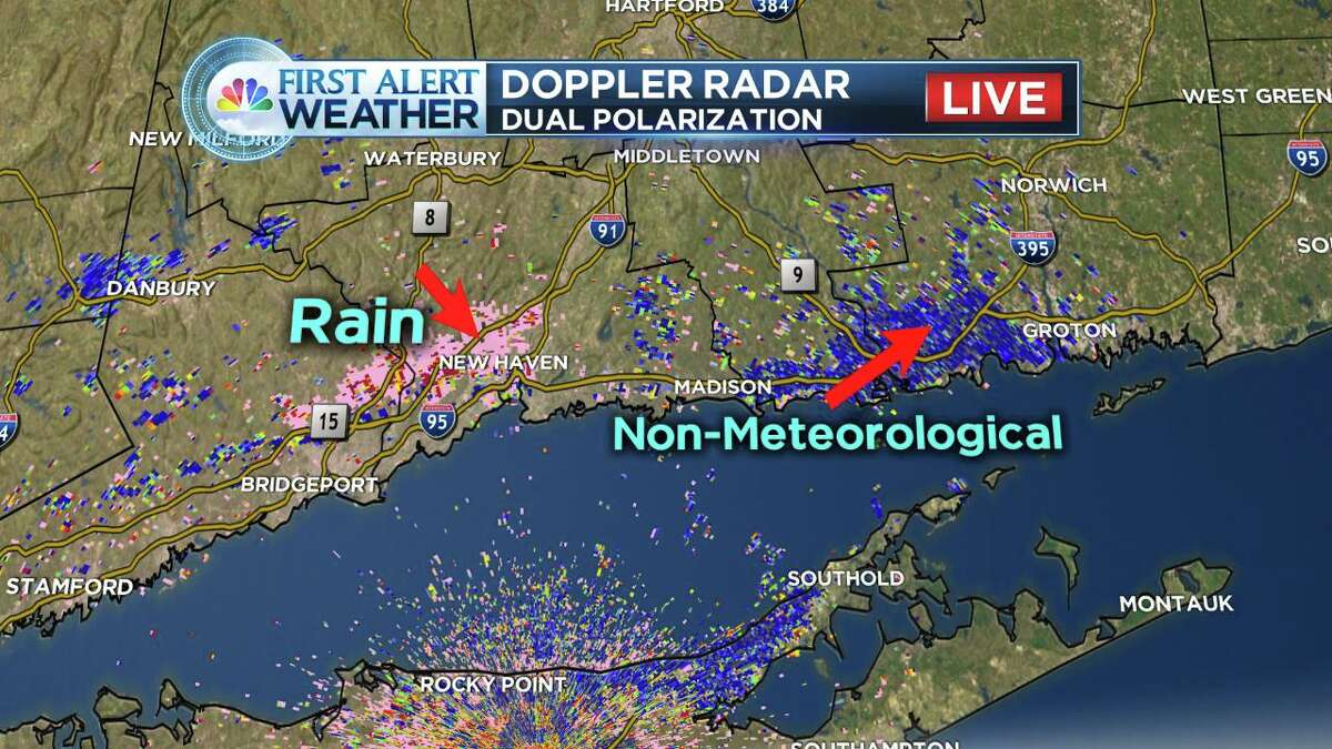 This radar image from NBC Connecticut shows migrating tree swallows around the Connectict River in the area labled as non-meteorlogical.