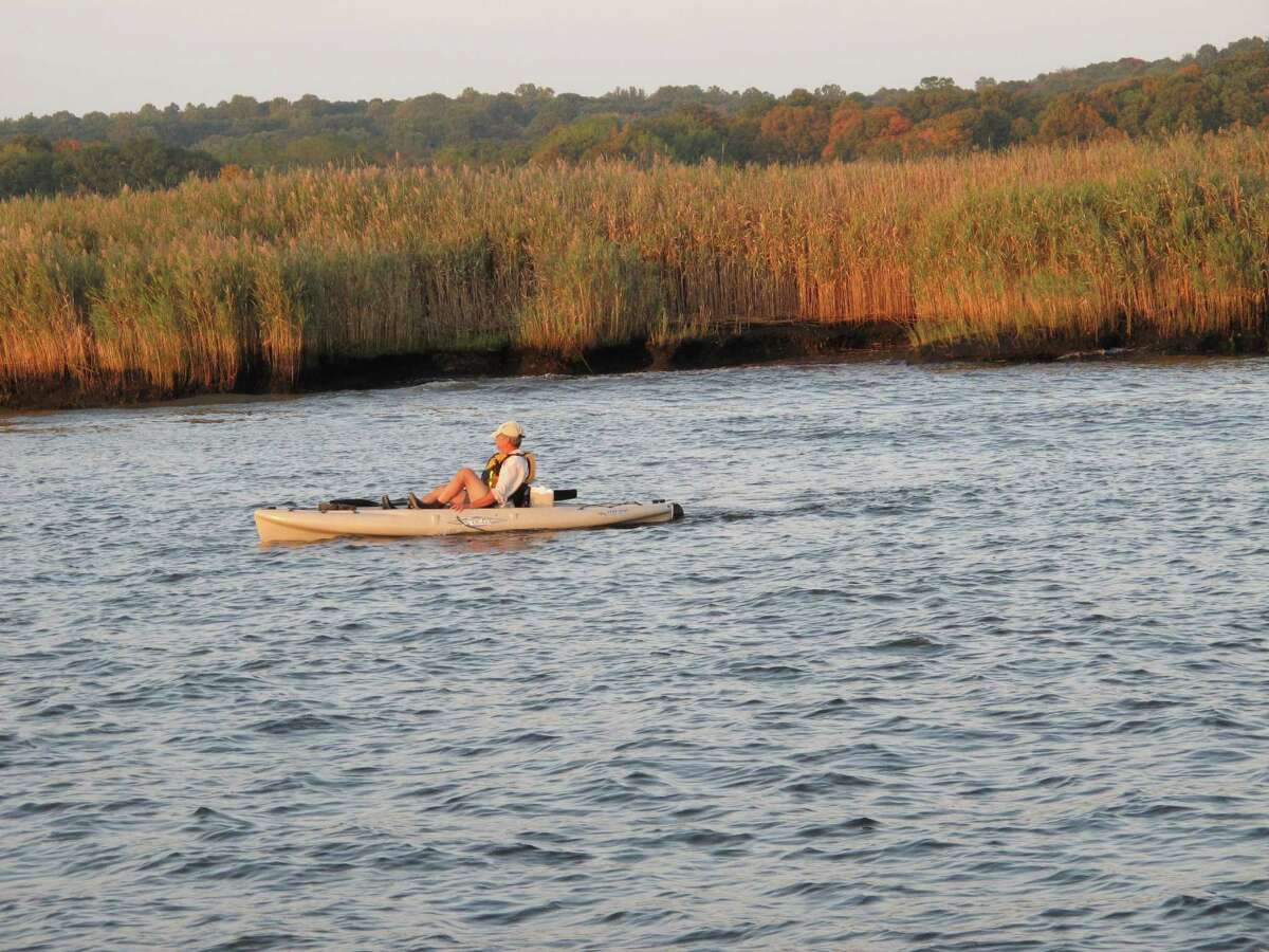 """In this October 5, 2013 photo, a kayaker on the Connecticut River awaits the arrival of tree swallows at sunset. In the fall, up to 400,000 swallows gather nightly over a remote island on the river, massing in thesky before plunging in a """"tornado"""" into the reeds below. The phenomenon, which is something of a mystery to experts, occurs for about six weeks before the birds begin their long migration south. (AP Photo/Helen O'Neill)"""