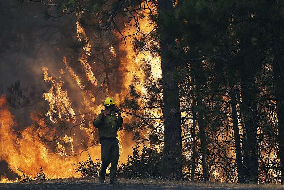 In this Aug. 25, 2013 file photo, firefighter A.J. Tevis watches the flames of the Rim Fire near Yosemite National Park, Calif. Criminal charges were dropped against a hunter accused of starting the massive wildfire that burned the Stanislaus National Forest and part of Yosemite National Park. The blaze burned for two months, scorching 400 acres and cost $125 million in to fight. Photo: Jae C. Hong, Associated Press