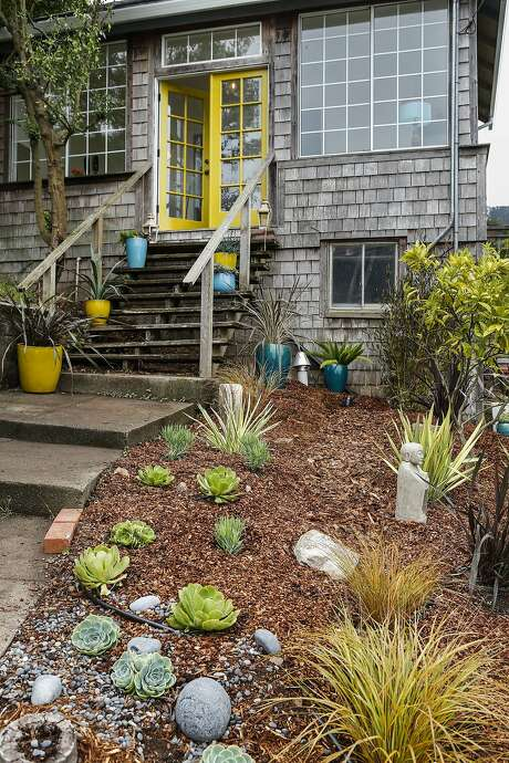 Jennifer Nix's garden at her Sausalito home, which she waters with a gray water system. Photo: Russell Yip, The Chronicle