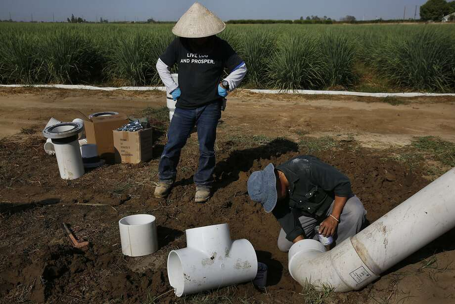 Tzexa Cherta Lee (right) works with his nephew, Cha Lee, to attach a new pipe for diverting water from his new well to his crops in Del Rey. The water level on his land now sits at about 170 feet, a drop of 30 feet since last year. Photo: Leah Millis, The Chronicle