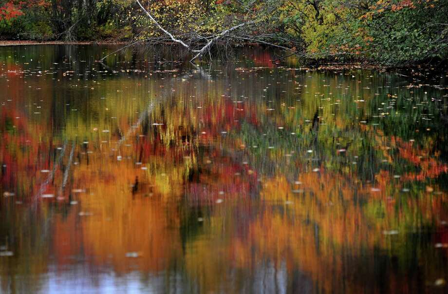 Fall foliage is at peak color is reflected in one of the many ponds at Twin Brooks Park in Trumbull, Conn. on Wednesday, October 29, 2014. Photo: Brian A. Pounds / Brian A. Pounds / Connecticut Post