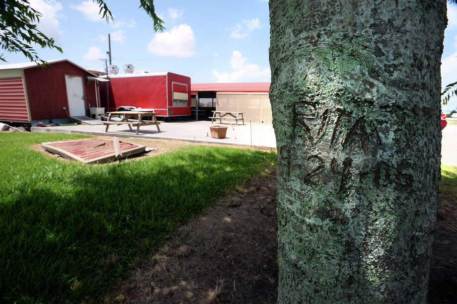 A tree at Tammie's Diner in Sabine Pass is carved to indicate the year Hurricane Rita struck and the height the  water reached. Photo taken Thursday, July 09, 2015 Guiseppe Barranco/The Enterprise Photo: Guiseppe Barranco, Beaumont Enterprise