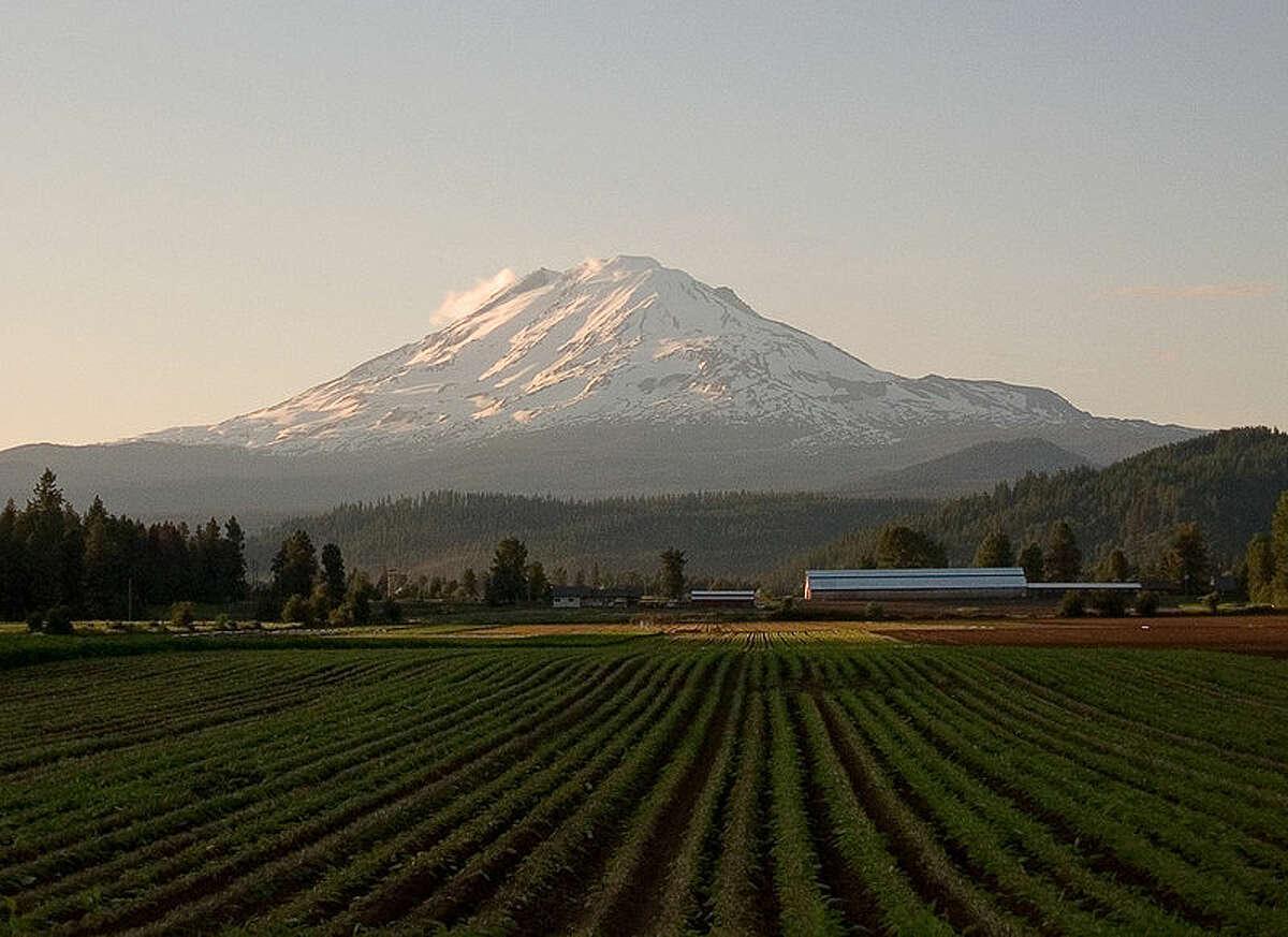 Yakima County and Mount Adams.
