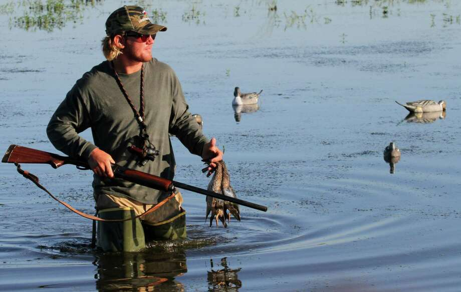 Caleb Harp of Rocky Creek Retrievers' Team Waterfowl retrieves a pair of blue-winged teal taken over a managed wetland near Garwood. Photo: Picasa