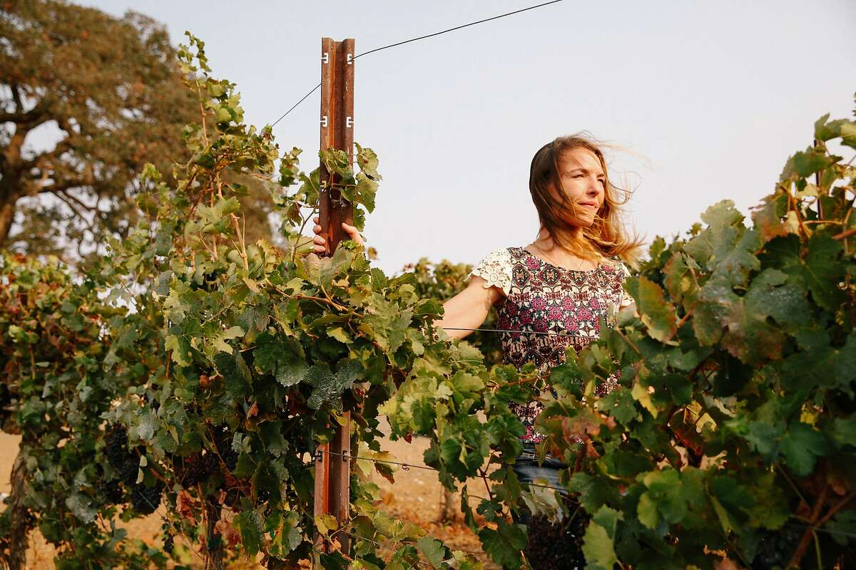 Nicole Salengo, the winemaker at Berryessa Gap, at their winery in Winters, Calif., on Monday, September 14, 2015.