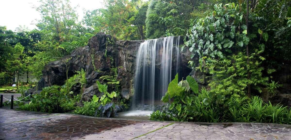 Singapore Botanic Gardens recently became a UNESCO World Heritage Site.