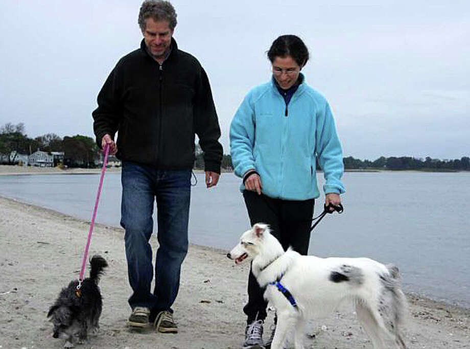 This couple walking their dogs off season at Compo Beach is following the rules, by keeping the animals on leash. The dogs are allowed back at the beach beginning Oct. 1 through March 31.Click through to see when you can bring dogs onto other southwestern Connecticut beaches.  Photo: File Photo / File Photo / Westport News