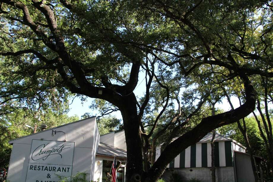 Crumpets Restaurant and Bakery is celebrating its 35 anniversary this year. Photo: Julie Cohen /San Antonio Express-News