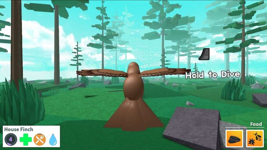 """Bird Simulator"" by Roblox video game creator Avian Skies. Left: The platform, coming to Xbox."