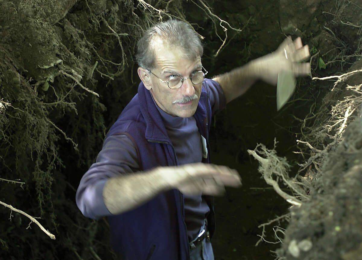 Checking for bodies in old cemetery in Greenwich in 2004, State Archeologist Nicholas Bellantoni explained how earth strata is displaced and what he is looking for.