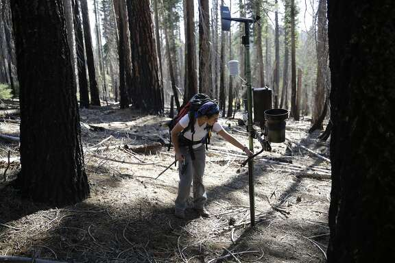 Gabrielle Boisrame, research lead, checks one of the weather stations in the Illilouette Basin during a visit in which cameras to measure the snowpack, to see how the changing snow and water systems play into the system of natural burn were being installed on trees on Monday, September 21, 2015 in Yosemite, Calif.