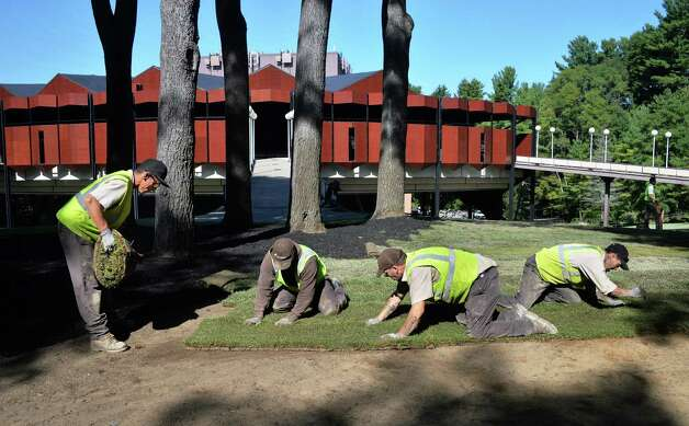 A crew from Brickman Landscaping in Schenectady resods the SPAC grounds Thursday Sept. 24, 2015 in Saratoga Springs, NY. (John Carl D'Annibale / Times Union) Photo: John Carl D'Annibale / 10033498A