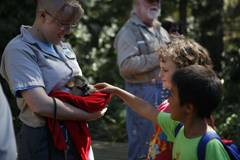 Robin Jaworski-Olson, 8, Middletown, Calif., (l) and Solomon Epple, 8, Middletown, Calif.,  petting the parie dog at the San Francisco Zoo. September 24, 2015 Photo: Franchon Smith, The Chronicle