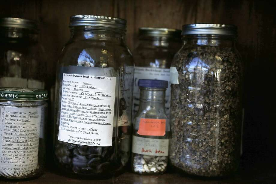 Seeds at the Richmond Grows seed library in Richmond, co-founded by Rebecca Newburn. Photo: Liz Hafalia, The Chronicle