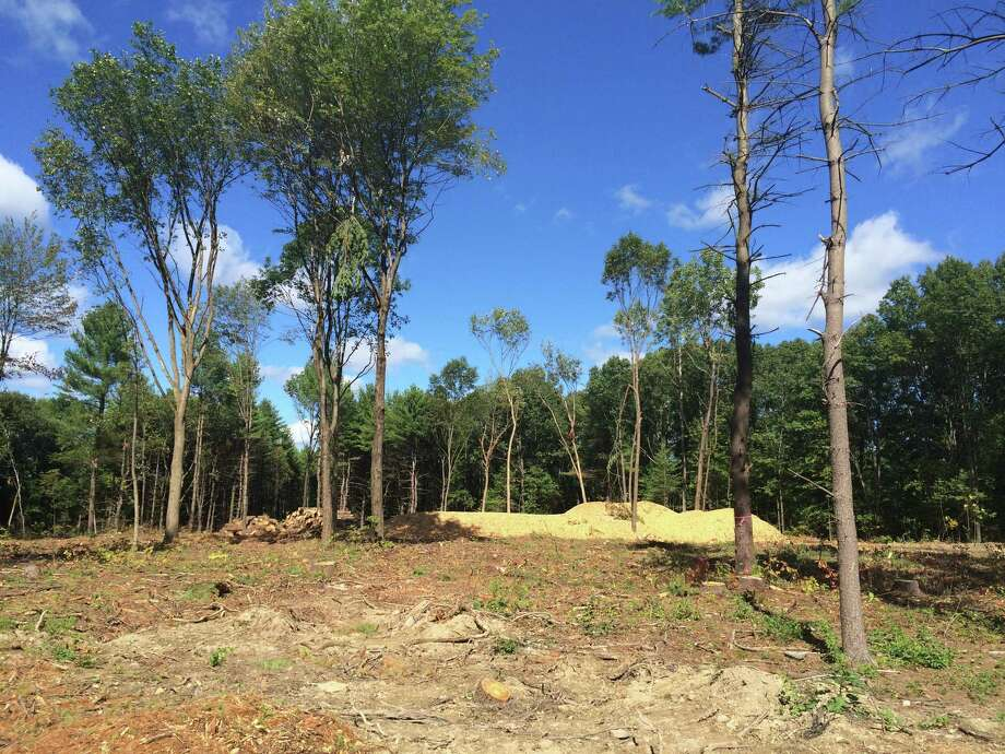 The Town of Niskayuna sold 19 wooded acres to Christopher Myers in 2014, pictured here Sept. 20, 2015. The developer, who had declared bankruptcy under the Parker Inn name, has cleared the site, but done little to show he'll build the high-end homes he promised.  (Lauren Stanforth)