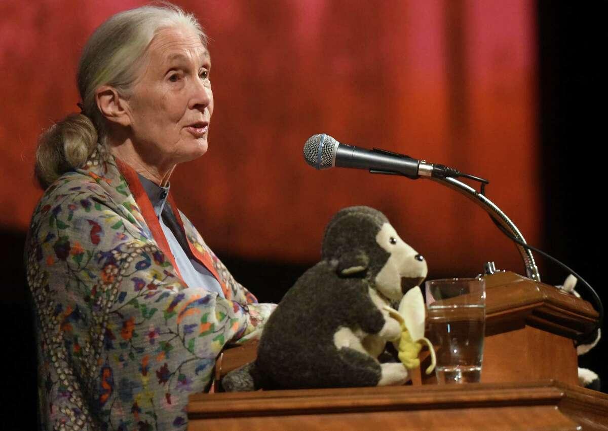 Jane GoodallPrimate expert, United Nations Messenger of Peace
