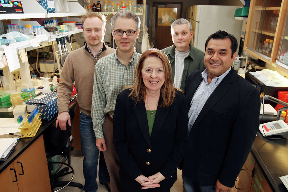 Dr. Jean Patterson (center), a scientist who chairs the Texas Biomedical Research Institute's Department of Virology and Immunology in San Antonio, has been working to develop a vaccine to fight the Ebola virus. She is shown here with members of the institute's biodefense research team. Photo: Express-News File Photo / © SAN ANTONIO EXPRESS-NEWS (NFS)