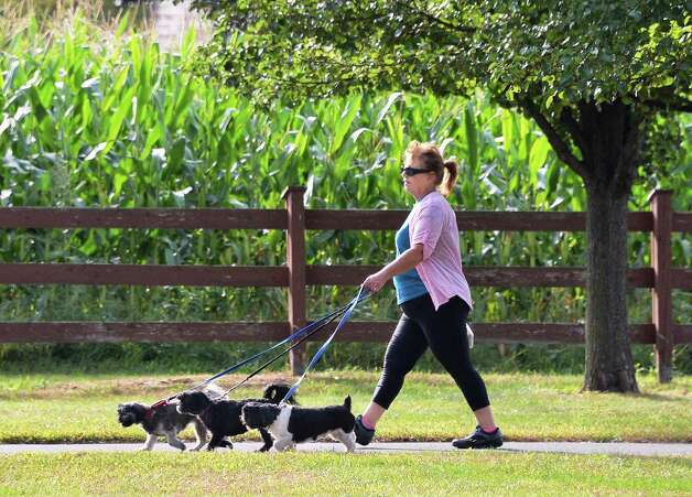 Linda Hotaling of Watervliet walks her three Shih Tzu dogs, Sadie, Chewie and Summer at the Crossings Friday morning Sept. 25, 2015 in Colonie, NY.  (John Carl D'Annibale / Times Union) Photo: John Carl D'Annibale