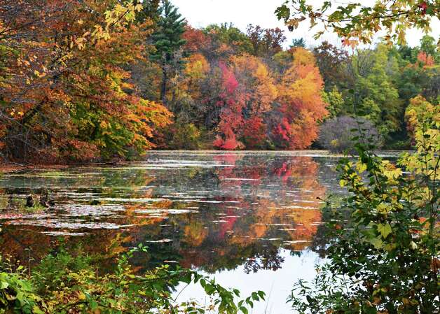 Fall foliage reflected in a small pond Wednesday Oct. 16, 2013, in Clifton Park, NY.  (John Carl D'Annibale / Times Union) Photo: John Carl D'Annibale